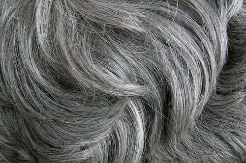 Ifølge en studie forårsaker stress grått hår