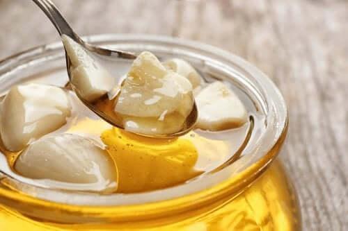 Hvitløk med honning