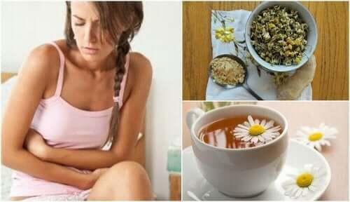 Ingefær- og kamillete for irritabelt tarmsyndrom