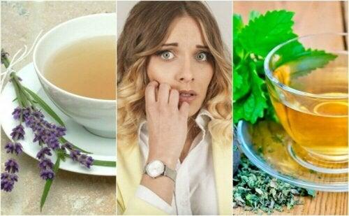 Ro ned nervøsitet med disse 5 urteremediene