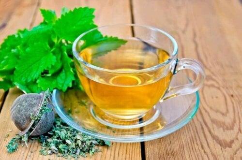Te med sitronmelisse for å roe nervøsitet