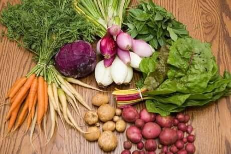 Økologisk jordbruk, det store håpet