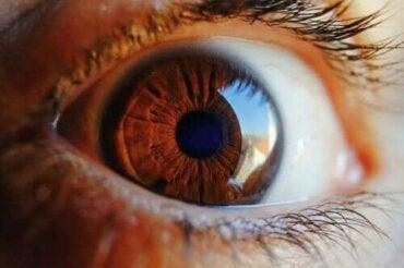 Finn ut hvordan øyet renser seg selv