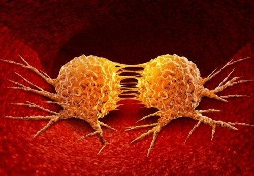 Kreftceller som utvikler seg.