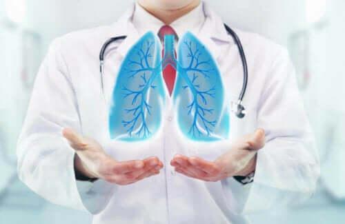 Lege holder lunger