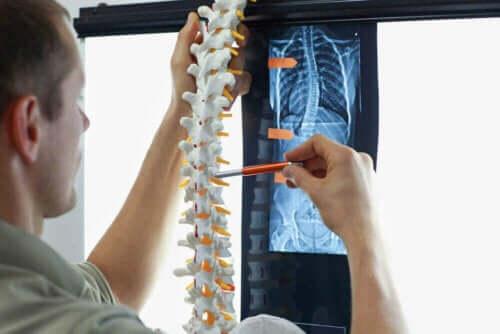 En lege som undersøker et røntgenbilde