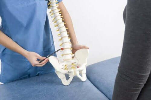 En lege med en modell av ryggraden