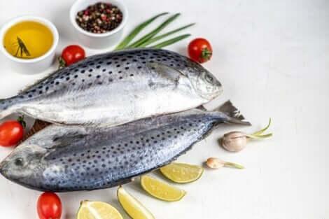 Dietter som er støttet av vitenskapen: Atlanterhavsdietten.