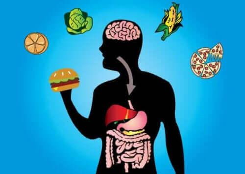 Metabolsk fleksibilitet