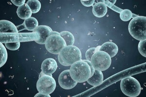 Naturlige løsninger for å lindre symptomene på candidiasis