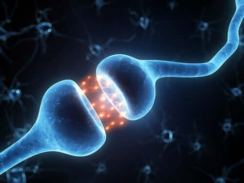 Nevroner som kommuniserer.