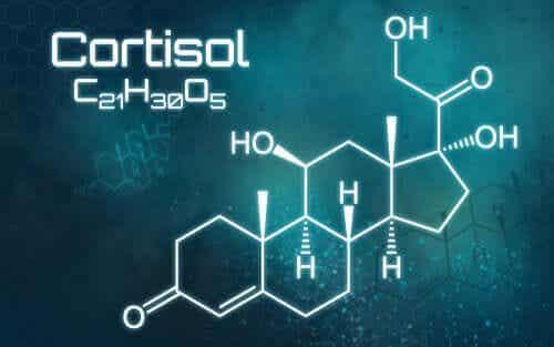 Overflødig kortisol: Alt du trenger å vite