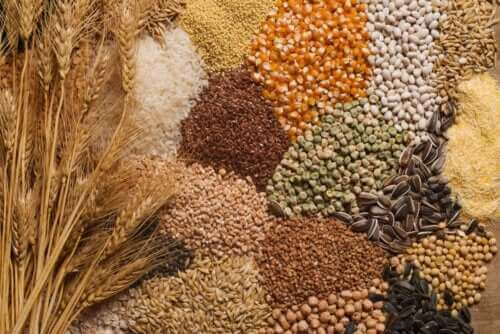 Tips for å inkludere frø i kostholdet ditt