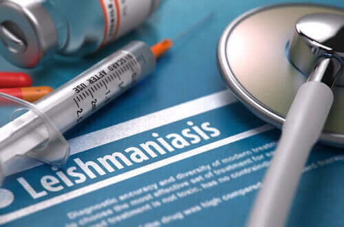 Er leishmaniasis smittsomt?