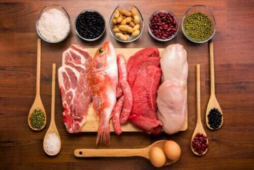 Alt om funksjonen til proteiner i kroppen
