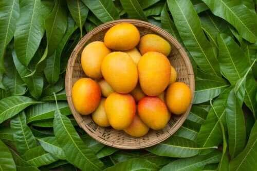 De seks helsemessige fordelene fra mangoblader