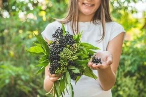 En jente som plukker bær.