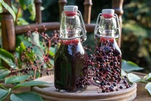 Hyllebærsirup: Fordeler, forholdsregler og tilberedning