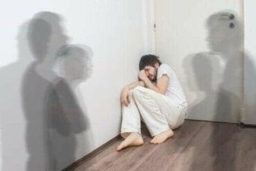 Typer schizofreni og deres egenskaper