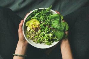 Forskjellene mellom begrepene veganer, vegetarianer og fleksitarianer
