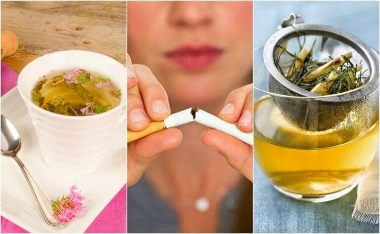 Slik kan du berolige tobakksbegjær med plantebasert te