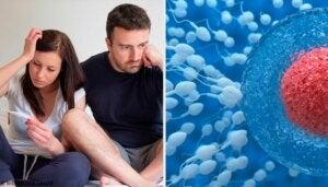 Tips for hvordan fertiliteten kan forbedres hos menn