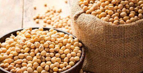 Soyabønnegryte med grønnsaker, oppskrifter rike på proteiner