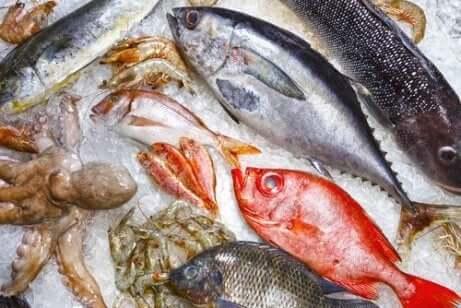 Assortert fisk som ligger på is