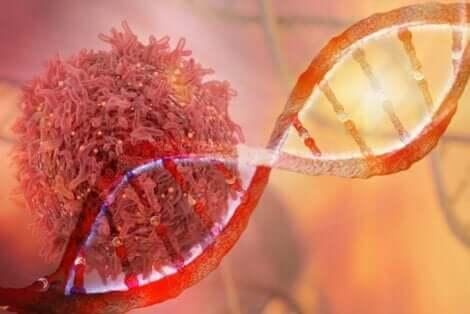En DNA-streng og en kreftcelle.