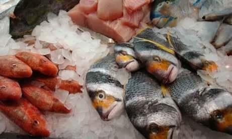 Identifiser dårlig fisk