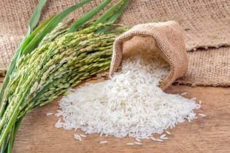 Ris- og maiskaker