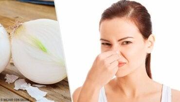 8 matvarer som forårsaker kroppslukt