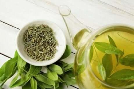 Grønn te er kjent for sine medisinske egenskaper