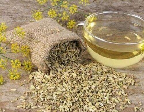 Tre oppskrifter på te med fennikel for vekttap