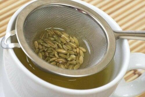 Te med fennikelfrø.