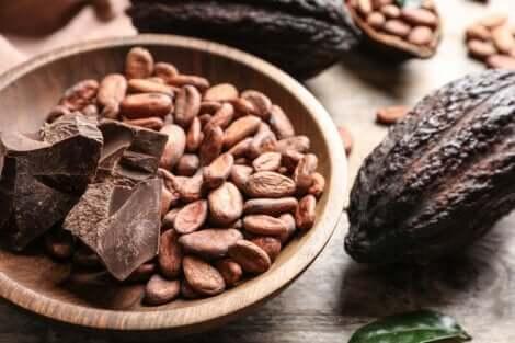 Kakaobønner og sjokolade.