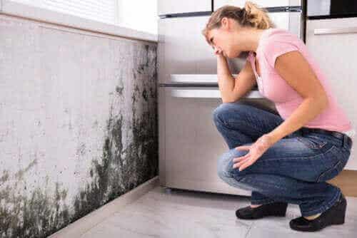Kan mugg i huset føre til helseproblemer?