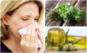 Beskytt åndedrettssystemet med oregano og olivenolje
