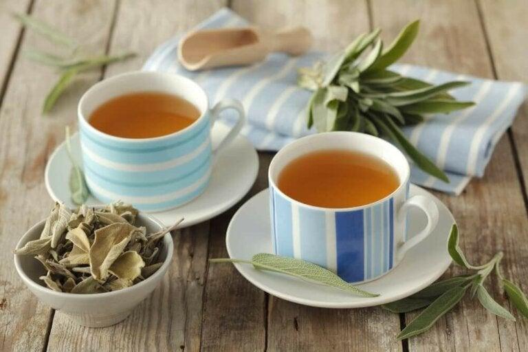 6 helbredende egenskaper fra urten salvie