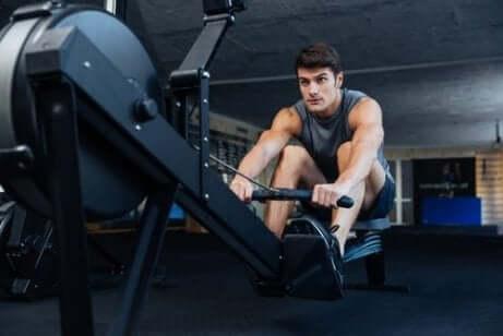 Muskelhypertrofi: En mann som sitter på en romaskin på et treningsstudio