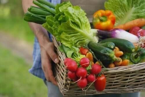 Frukt og grønnsaker er matvarer med et lavt natriuminnhold.