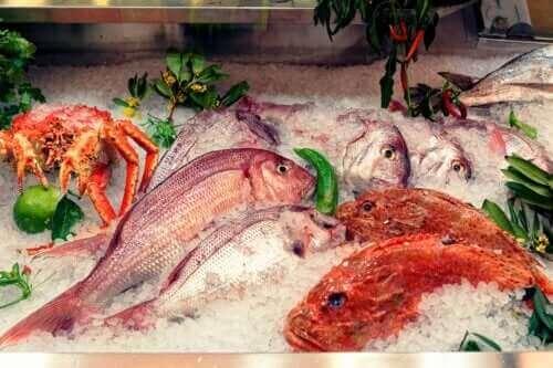 Effektene av kvikksølv i fisk