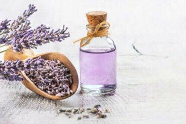 6 gode medisinske planter med vitenskapelige bevis