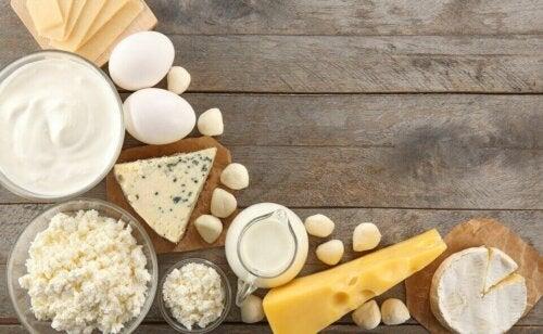 Å redusere inntaket av meieriprodukter kan forbedre nyrefunksjonen