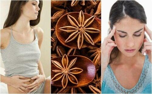 5 hjemmelagde remedier med anis som det er verdt å kjenne til
