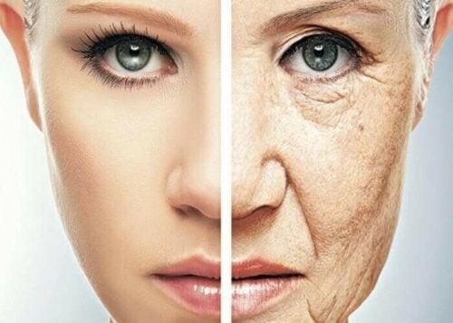 Tidlig aldring.
