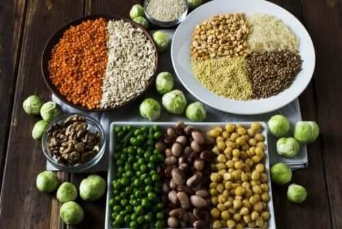 Et brett med alternativer til animalsk protein.