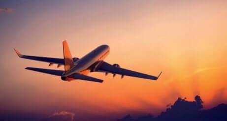 Et fly som tar av i solnedgang