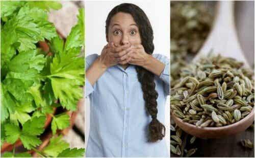 Fem naturlige remedier for gastrointestinal halitose