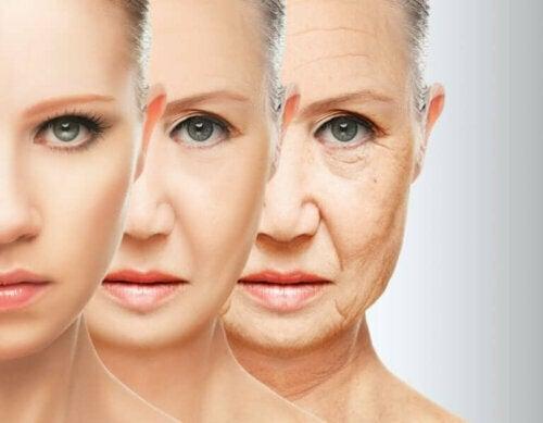 Kostholdsvaner for å bekjempe for tidlig aldring